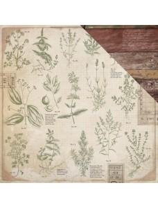 12x12 Anthology - Herbs disainpaber
