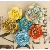 Lady Bird Roses lilled