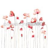 12x12 Red poppy international disainpaber